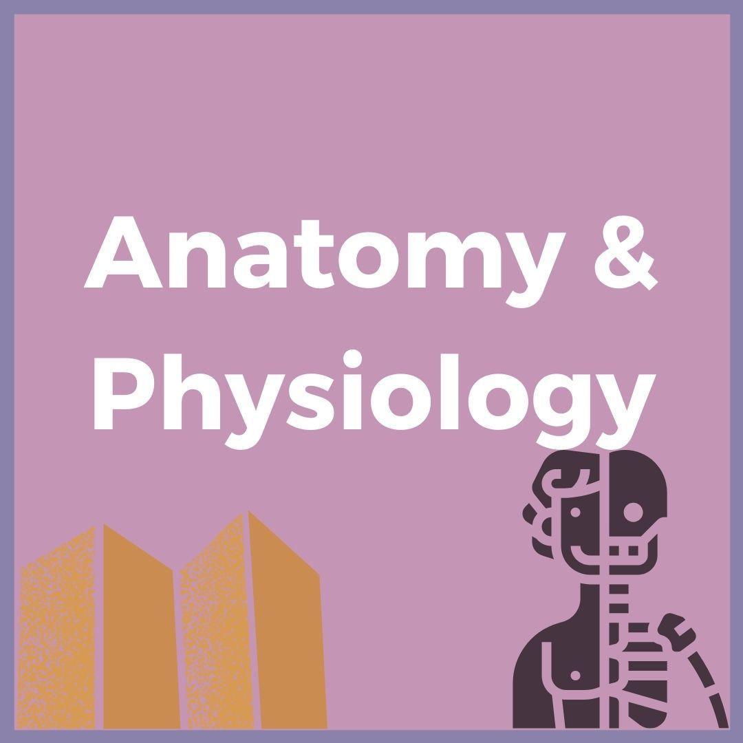 Anatomy & Physiology- Verrolyne Training UK Course