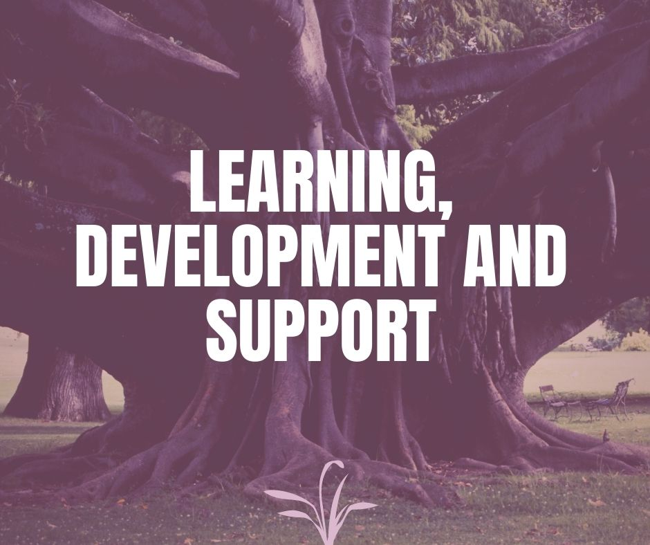 Learning, Development and Support - Verrolyne Training