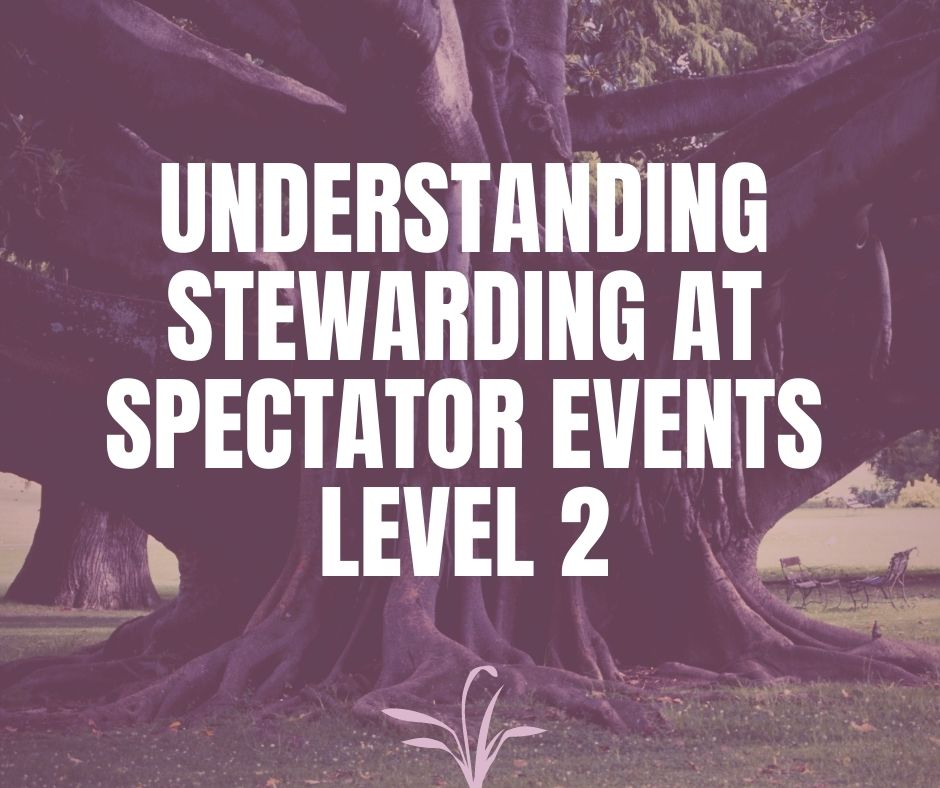 Understanding Stewarding at Spectator Events Level 2 - VT